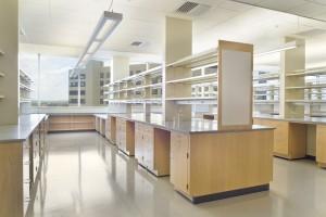 E Line Series Maple Laboratories II-60