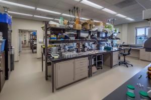 GVSU Kindschi Hall of Science  5-193
